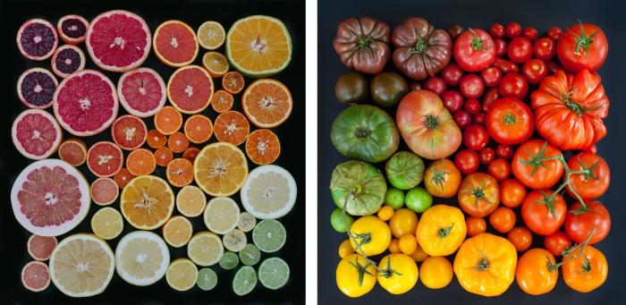 Emily Blincoe, Citrus Fest et Tomato Season, 2014