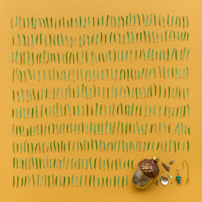 Emily Blincoe, Contents of Dustpan After Christmas Tree Removal, 2015
